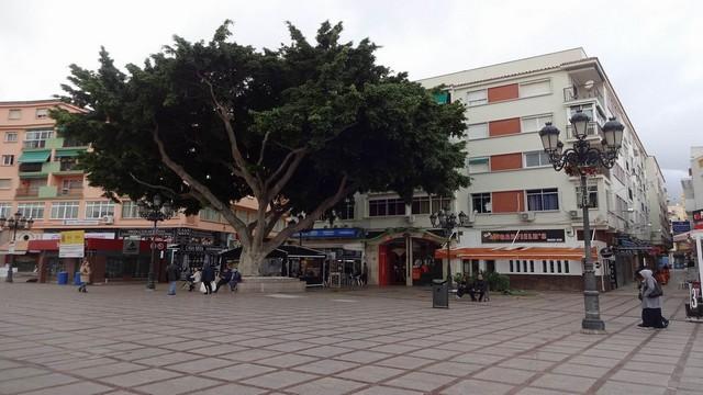 Plaza de la Nogalera